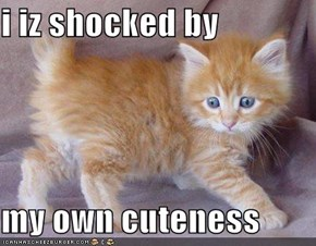 i iz shocked by  my own cuteness
