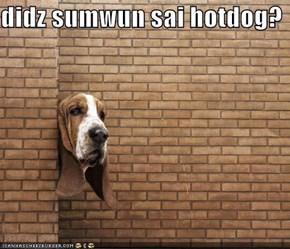 didz sumwun sai hotdog?