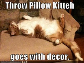 Throw Pillow Kitteh  goes with decor.