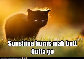 Sunshine burns mah butt. Gotta got