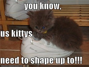 you know,  us kittys  need to shape up to!!!