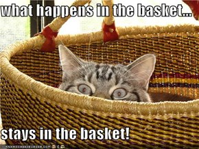 what happens in the basket...  stays in the basket!