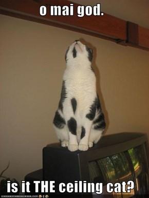 o mai god.  is it THE ceiling cat?
