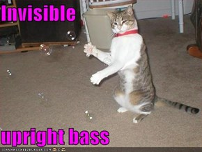 Invisible  upright bass