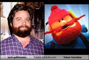 zach galifianakis Totally Looks Like Yukon Cornelius
