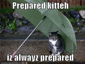 Prepared kitteh  iz alwayz prepared