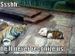 Ssshh..   he'll never reconize us