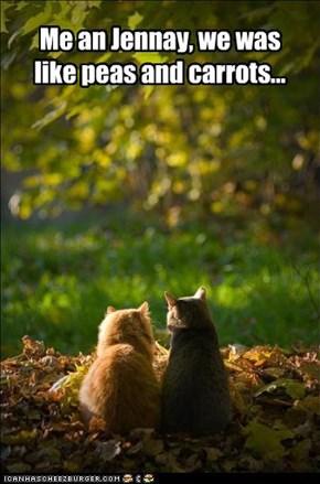 Forrest Gump kitteh...