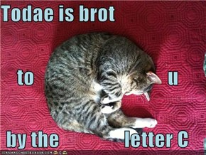 Todae is brot to                                 u by the                letter C