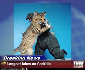 Breaking News - Longcat takes on Godzilla