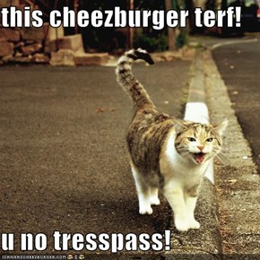 this cheezburger terf!  u no tresspass!