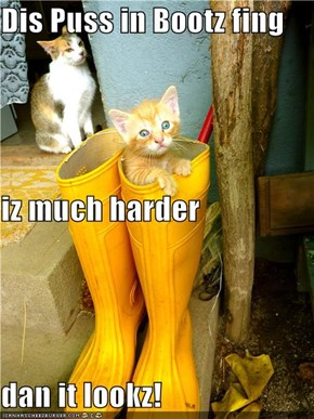 Dis Puss in Bootz fing iz much harder dan it lookz!
