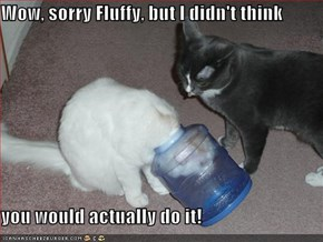 Wow, sorry Fluffy, but I didn't think  you would actually do it!