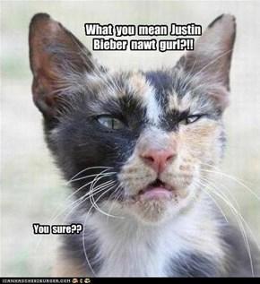 Skeptical cat, is skeptical