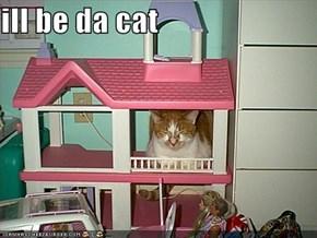 ill be da cat