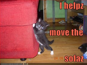 I helpz move the sofaz