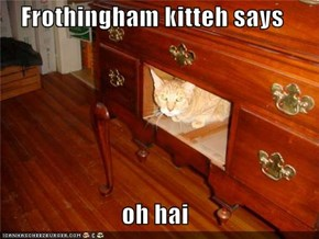 Frothingham kitteh says  oh hai