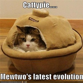 Cattypie.....   Mewtwo's latest evolution