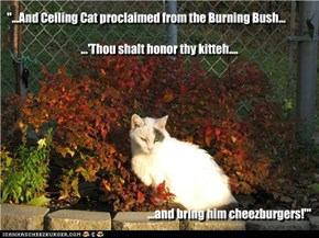 """...And Ceiling Cat proclaimed from the Burning Bush..."