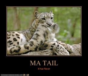 MA TAIL