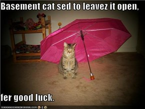 Basement cat sed to leavez it open,  fer good luck.