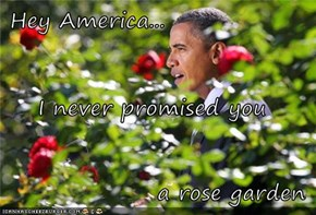 Hey America... I never promised you a rose garden