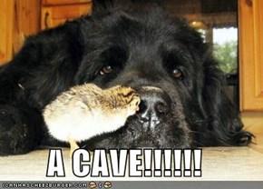 A CAVE!!!!!!