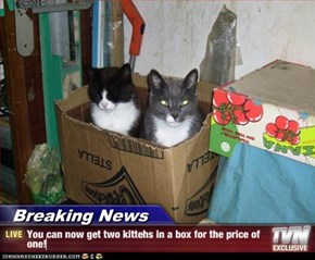 Breaking News - You can now get two kittehs in a box for the price of one!