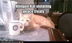 Klingon Kat violating peace treaty