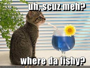 uh, scuz meh?  where da fishy?