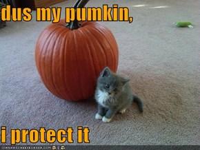 dus my pumkin,  i protect it