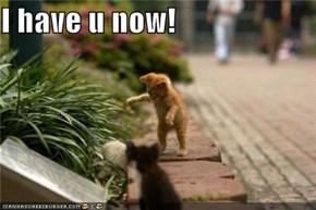 I have u now!