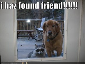 i haz found friend!!!!!!