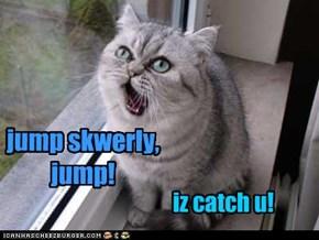 jump skwerly, jump!