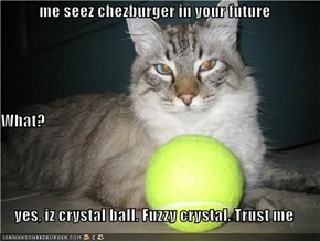 me seez chezburger in your future What? yes, iz crystal ball. Fuzzy crystal. Trust me