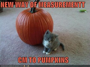 NEW WAY OF MEASUREMENTT  CM TO PUMPKINS