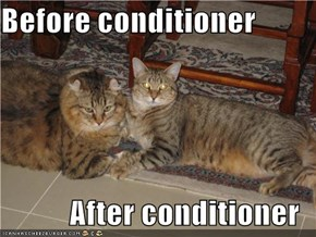 Before conditioner  After conditioner