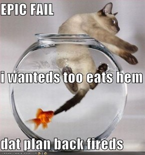 EPIC FAIL i wanteds too eats hem dat plan back fireds