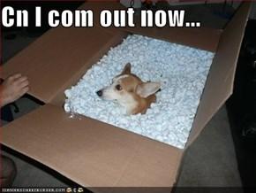 Cn I com out now...