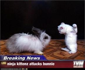 Breaking News - ninja kittenz attacks bunnie