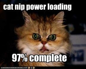 cat nip power loading