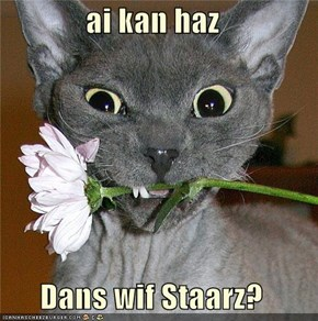 ai kan haz  Dans wif Staarz?