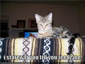 i starez at you till you feedz me
