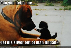 Can you helps me...  get dis sliver out of mah fingah?
