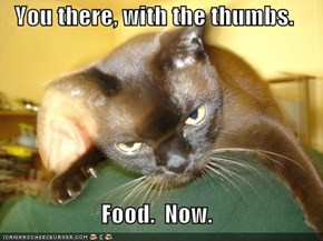 You there, with the thumbs.  Food.  Now.