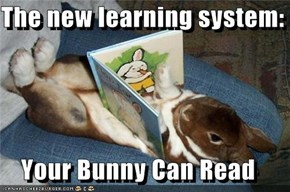 The new learning system:  Your Bunny Can Read