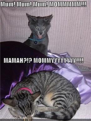 Mum! Mum! Mum! MOMMMMM!!! MAMAH?!? MOMMYYYYYYYY!!!!