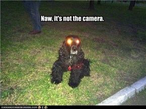 Naw, it's not the camera.