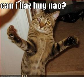can i haz hug nao?