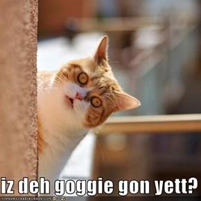 iz deh goggie gon yett?